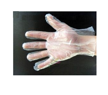 Disposable Glove * 500 ct x 12 Box / Case