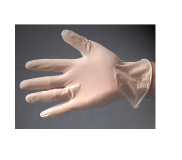 Vinyl Glove With No Powder 100 Pair * Size : M * 10 Box Case
